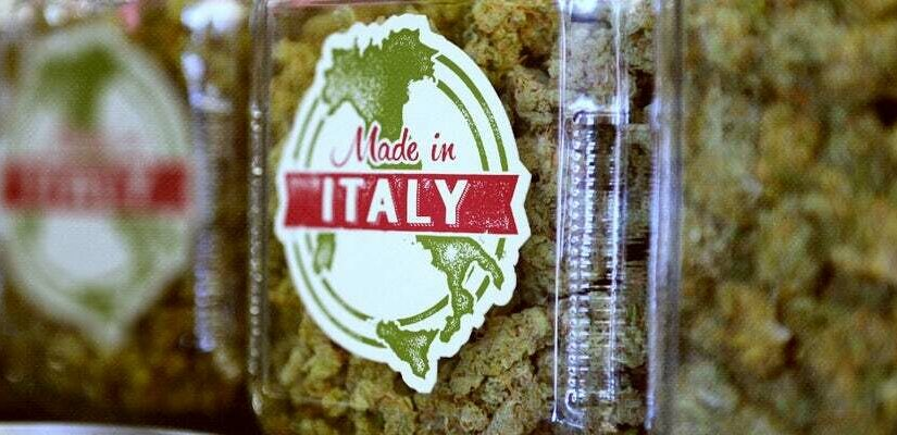 Italymedicalcannabis