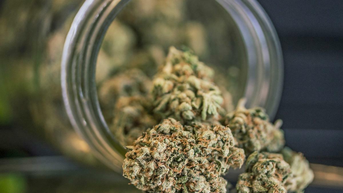 Oregon Sold $103 Million Worth of Legal Cannabis Last Month